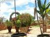 Masai Eco Lodge Courtyard