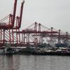 Cranes And Squatters At Manila North Harbor