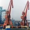 Cranes At Dalian Port