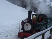 Southern Railway Fuegian