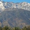 Cucamonga Peak From Victoria Gardens
