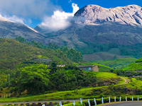 Cochin and Munnar Package