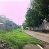 Daang Hari Road
