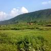 Dalma Wildlife Sanctuary Jamshedpur