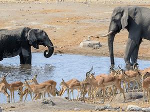 6 Days Etosha,Swakopmund And Sossusvlei Safari - Lodging Fotos