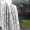 Dambri Cascada
