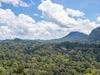 Danum Valley Rainforest - Sabah - Malaysia