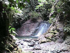 Parque Nacional Darién
