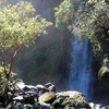 Dawson Falls Viewing Point Walk - North Island - New Zealand