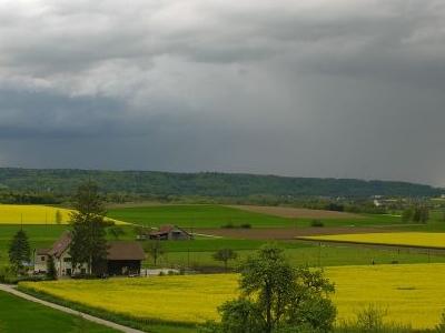 Countryside Near Dorflingen