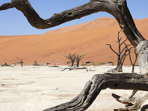 3 Day Guided Namib Desert Tour Fotos