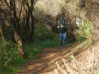 Deep Creek Trail 128 - Tonto National Forest - Arizona - USA