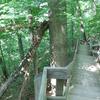 Deer Run Trail At O'Neil Woods