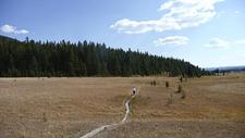 Delacy Creek Trail - Yellowstone - USA