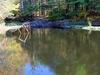 Delaware Water Gap National Recreation Area - Pennsylvania