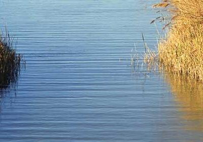 Delta De L'Ebre Nature Reserve