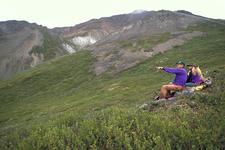 Denali National Park Visitors