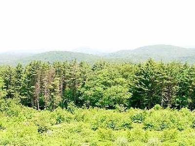 Dennis Hill State Park