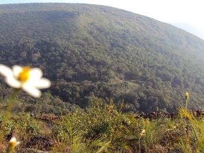 Deomali Hill Jpg4