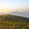 Deomali Hills