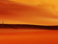 Camel Riding and Observation in Desert