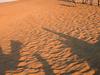 View Of Desert National Park