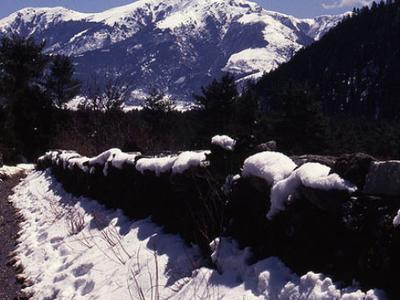 Dhorpatan Hunting Reserve