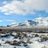 Diamond Mountains (Nevada)