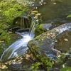 Dingmans Falls - Pike County - Pennsylvania