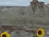 Hoodoos At Dinosaur Provincial Park