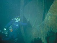 Henry Chisholm Diving Spot