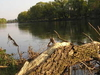 Morava River Near Devinska Nova Ves