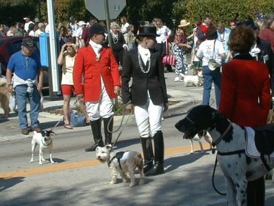 Dog  Parade In  Deland