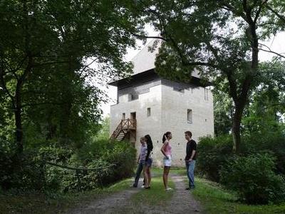 Dombóvár-Island Forest