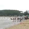 Son Beach