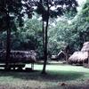Dos Pilas - Petén Department - Guatemala