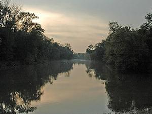 Driftwood Río