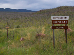 Dripping Springs Campground