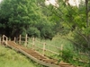 Drubazas Botany Trail-Latvia