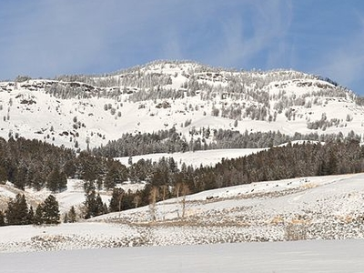 Druid Peak - Yellowstone - USA