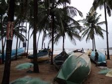 Baga Beach Boats & Palms