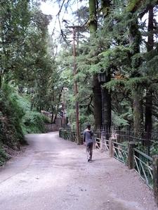Camels Back Road Trail