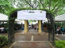 Salcedo Community Market