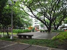 Lush Urban Breathing Space