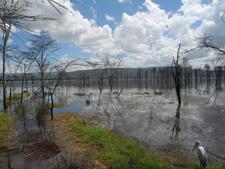 Lake Nakuru Views