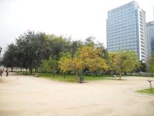 Gardens & Open Space