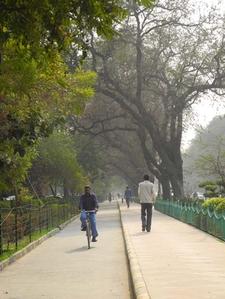 Excellent Biking Path