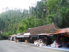 Store At The Forest Entrance