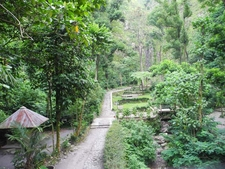 Pronojiwo Hill - Merapi Lookout Trail
