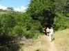 Rinca Loh Buaya Trailhead